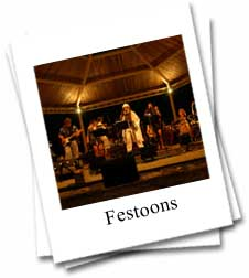Photo of the Festoon Band